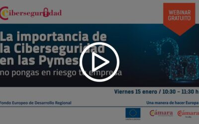 Webinar La importancia de la Ciberseguridad en las Pymes; no pongas en riesgo tu empresa